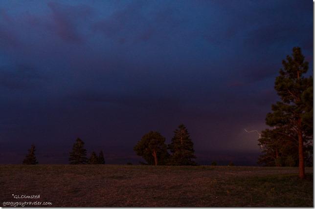 lightning Marble View Kaibab National Forest Arizona