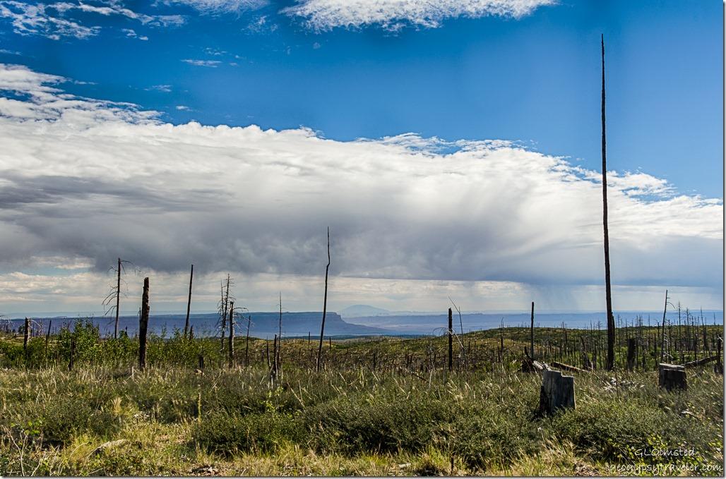 stormy sky Marble Platform Vermilion & Echo Cliffs SR67 Kaibab National Forest Arizona
