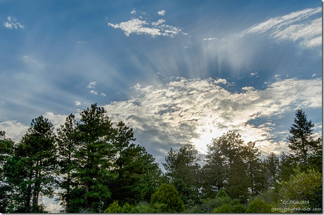 trees clouds cresuscular rays from Point Imperial North Rim Grand Canyon National Park Arizona