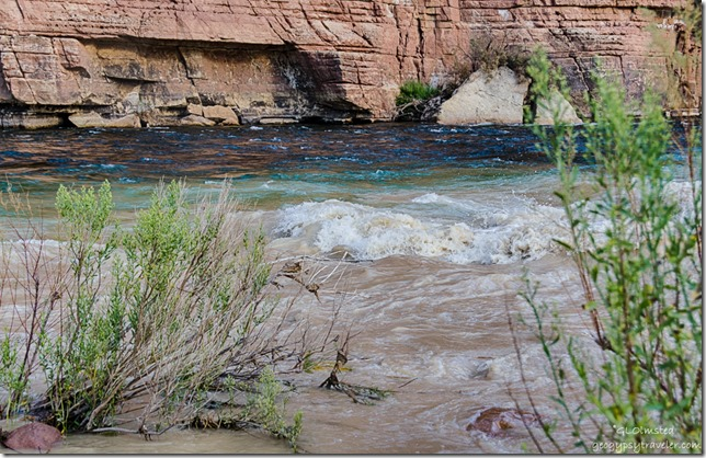 muddy Paria River flows into Colorado River below Lee's Ferry Glen Canyon National Recreation Area Arizona