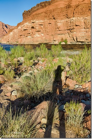 Gaelyn's shadow Colorado River cliffs below Lee's Ferry Glen Canyon National Recreation Area Arizona