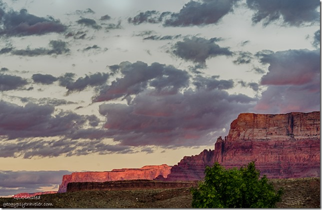 first light Vermilion Cliffs from camp Lee's Ferry Glen Canyon National Recreation Area Arizona