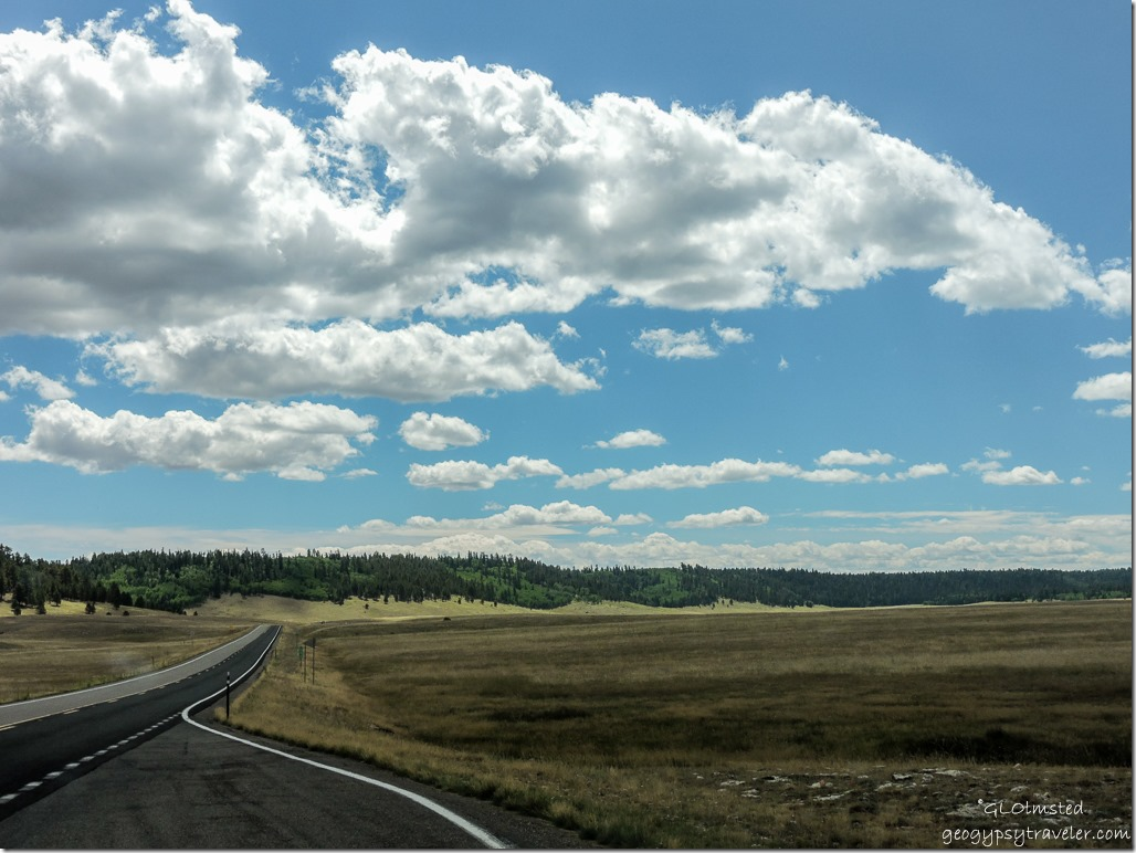 meadows forest clouds SR67 South Kaibab National Forest Arizona