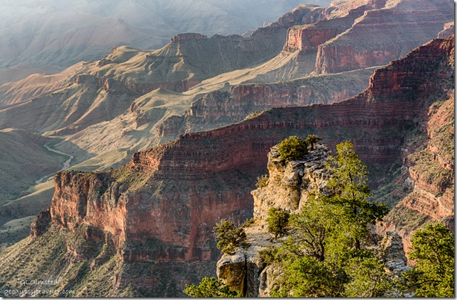 inner canyon Walhalla overlook Cape Royal Road North Rim Grand Canyon National Park Arizona