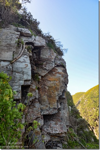 Rock bluff along Suspension Bridge trail at Storms River Mouth Tsitsikamma National Park South Africa