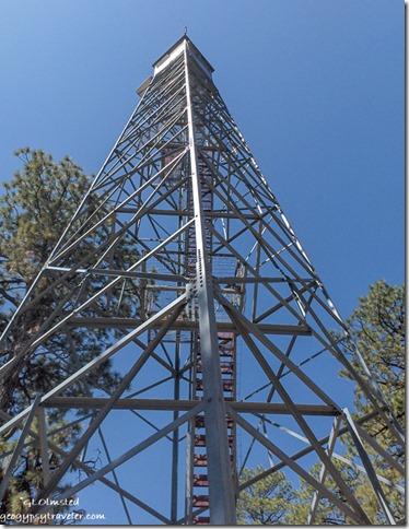 Jacob Lake Fire tower Kaibab National Forest Arizona