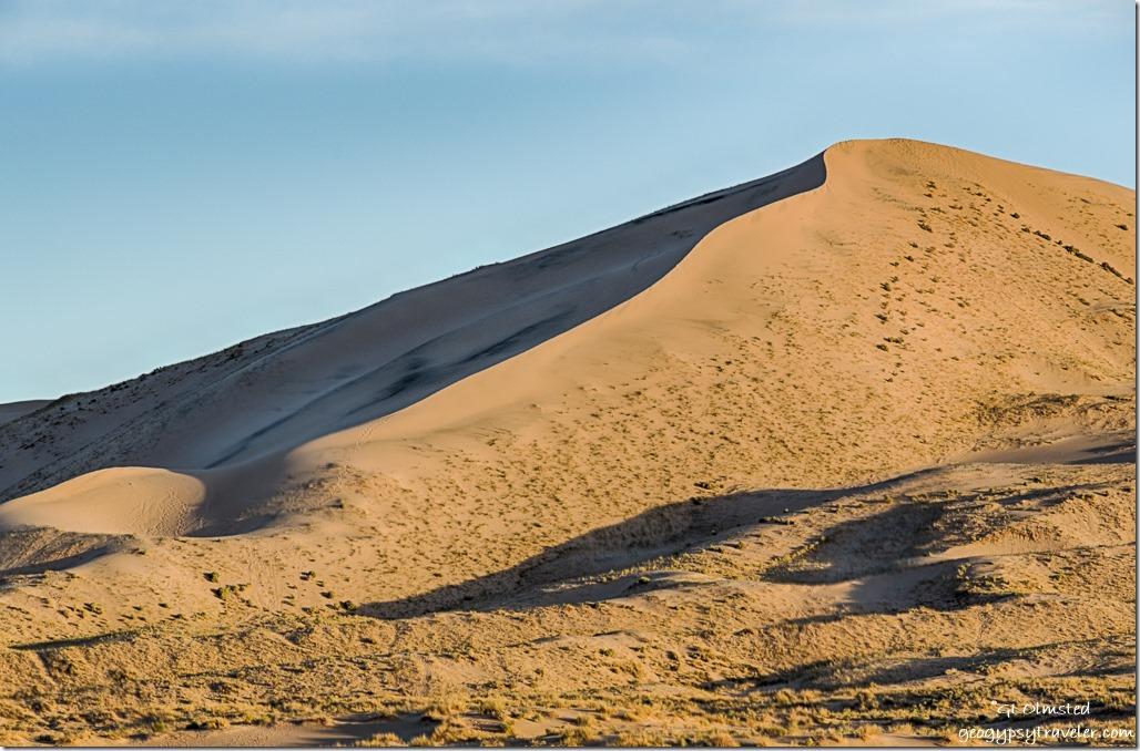 morning light Kelso Dunes Mojave National Preserve California