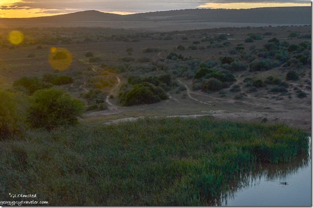 Sunrise at dam Addo Elephant National Park South Africa