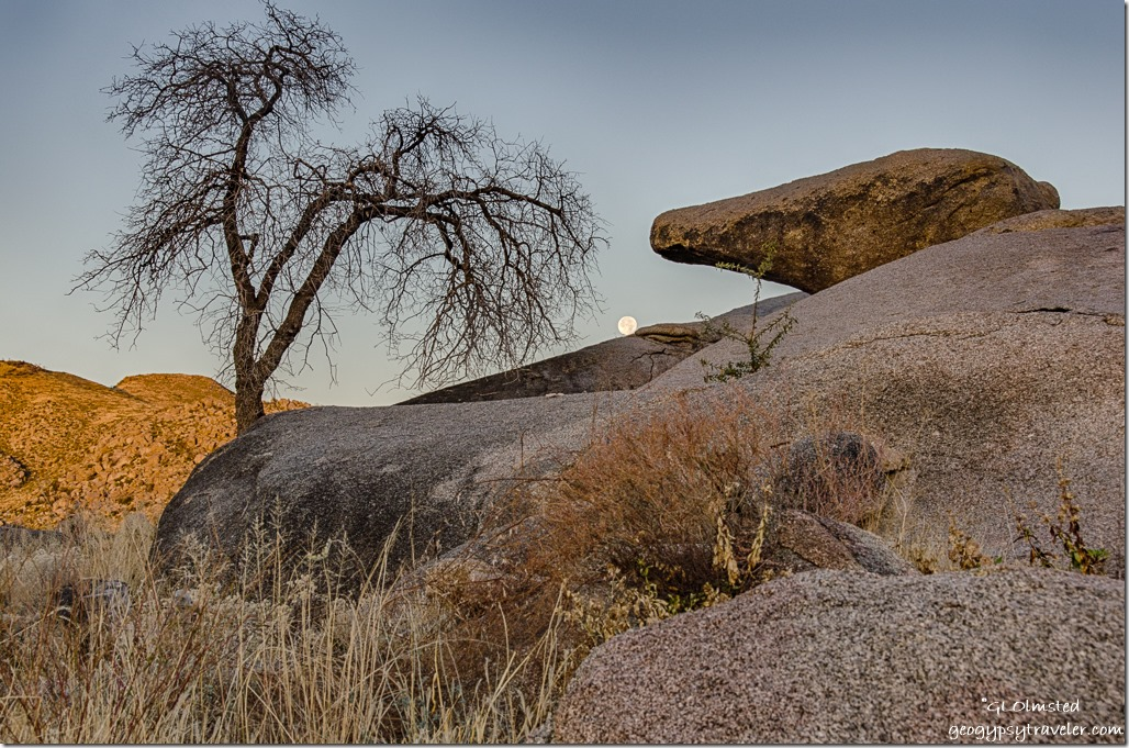 boulders tree Weaver Mountains full moon set Yarnell Arizona