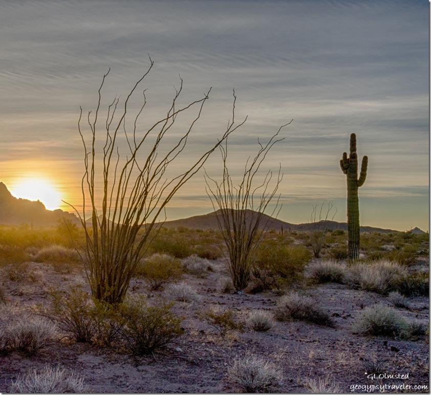 desert sunrise Kofa Mountains Kofa NWR Arizona