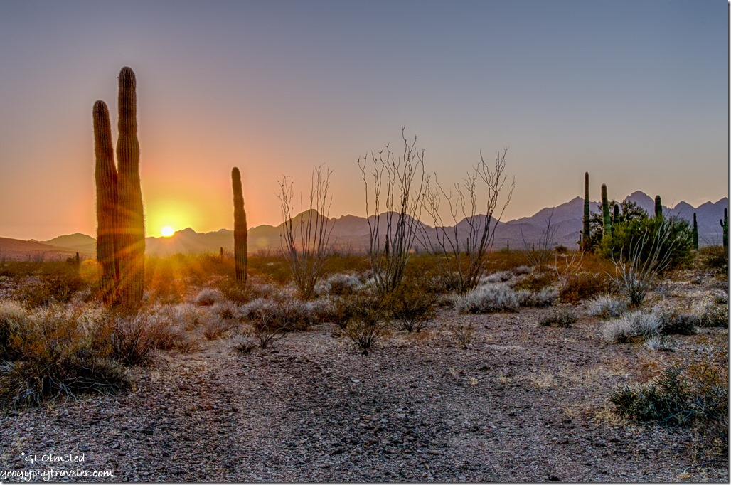saguaros ocotillos Chocolate Mountains sunset sunrays King Valley Road Kofa National Wildlife Refuge Arizona