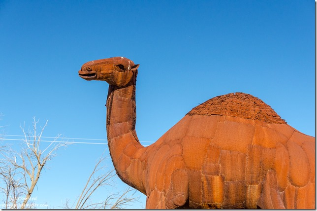 Camel metal sculpture by Ricardo Breceda Galleta Meadows Borrego Springs California