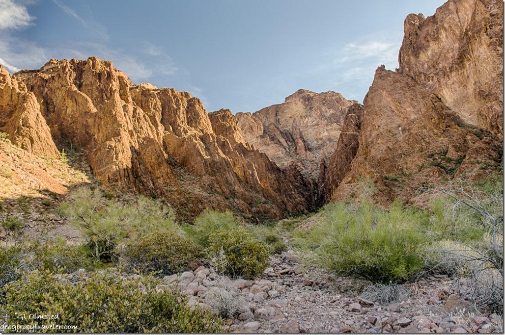 entering Palm Canyon trail Kofa NWR Arizona