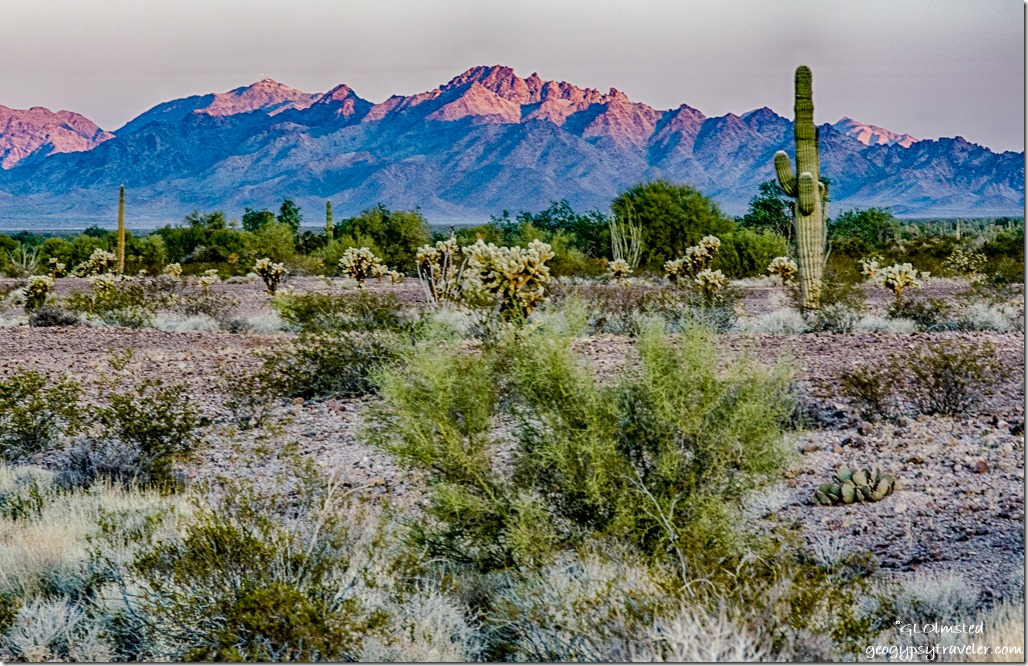 desert first light Chocolate Mountains Kofa National Wildlife Refuge Arizona