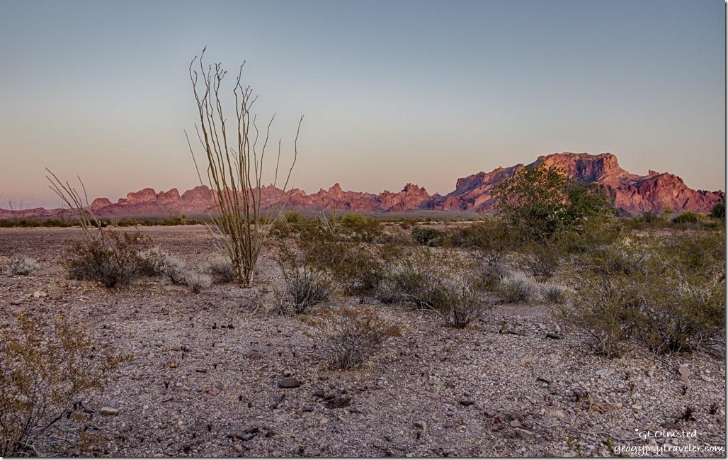 desert Kofa Mountains Kofa NWR Arizona
