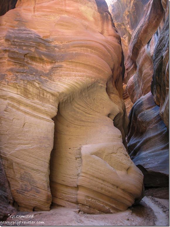 skull canyon coffee lake