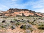 Dog friendly hiking and camping at Snow Canyon State Park